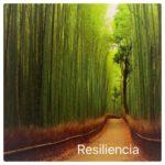 Psicólogo Marbella - Psicología - Hipnosis - Psicoterapia - Psicólogos Marbella - La Resiliencia