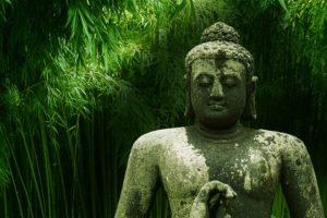 buddha 2267012 640 300x200 - buddha-2267012_640