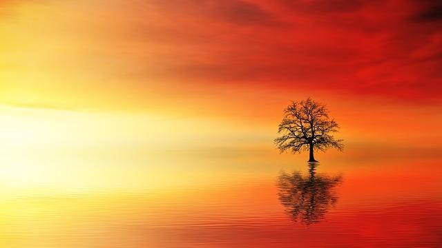 sunset 3097456 640 - Frases de Sabiduría (52)